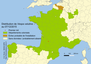Collectivités Territoriales - Répartition des frelons asiatiques en 2015